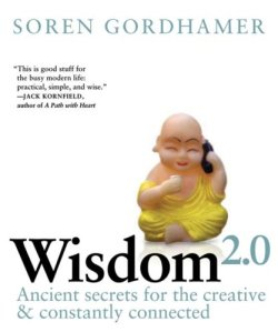 Libro Wisdom 2.0